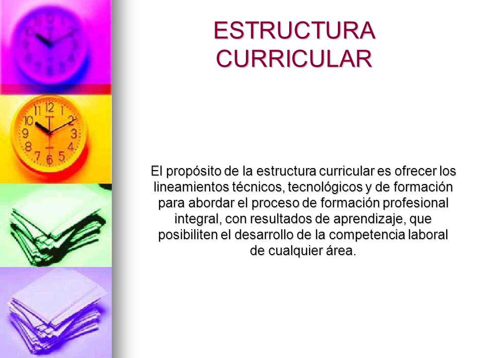 ESTRUCTURA CURRICULAR