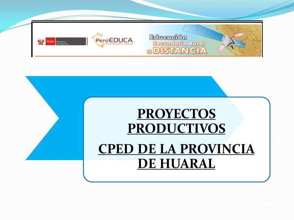 CPED DE LA PROVINCIA DE HUARAL PROYECTOS PRODUCTIVOS