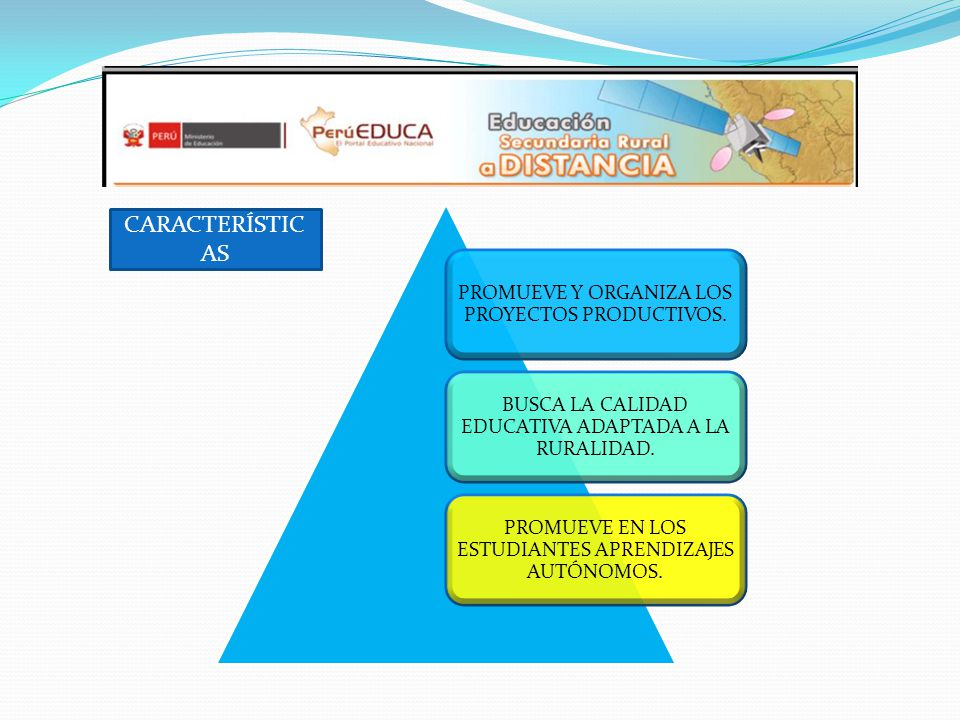 CARACTERÍSTICAS PROMUEVE Y ORGANIZA LOS PROYECTOS PRODUCTIVOS.