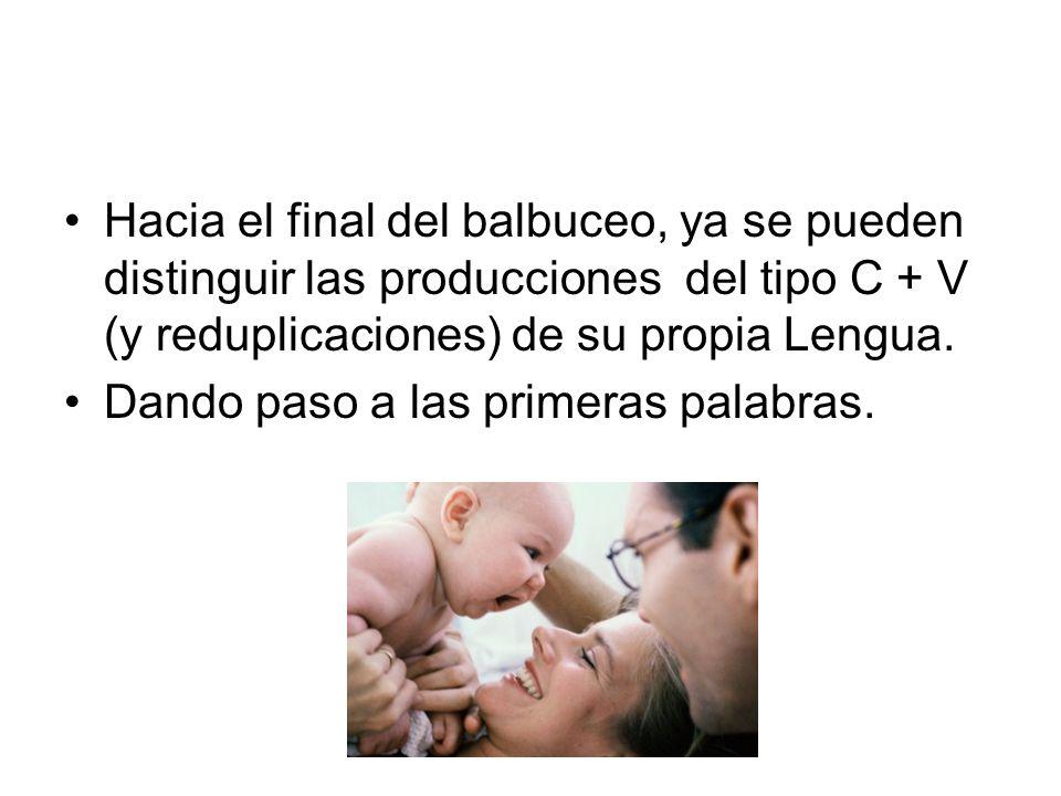 Hacia el final del balbuceo, ya se pueden distinguir las producciones del tipo C + V (y reduplicaciones) de su propia Lengua.