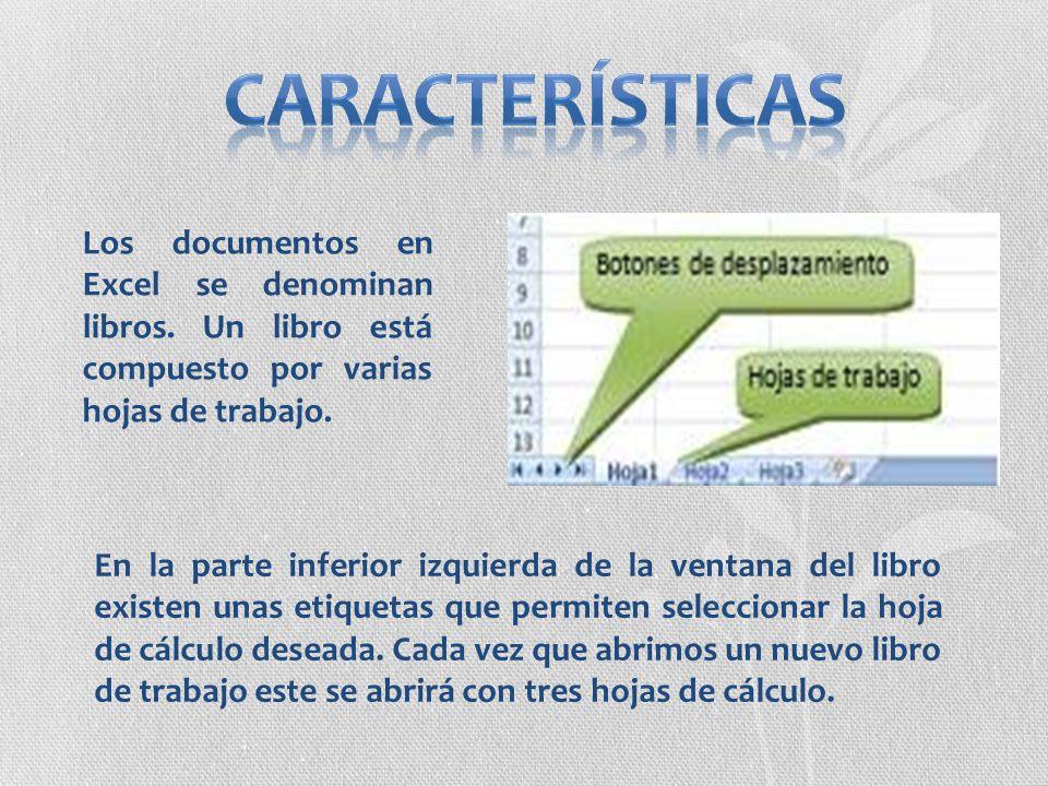 Características Los documentos en Excel se denominan libros. Un libro está compuesto por varias hojas de trabajo.