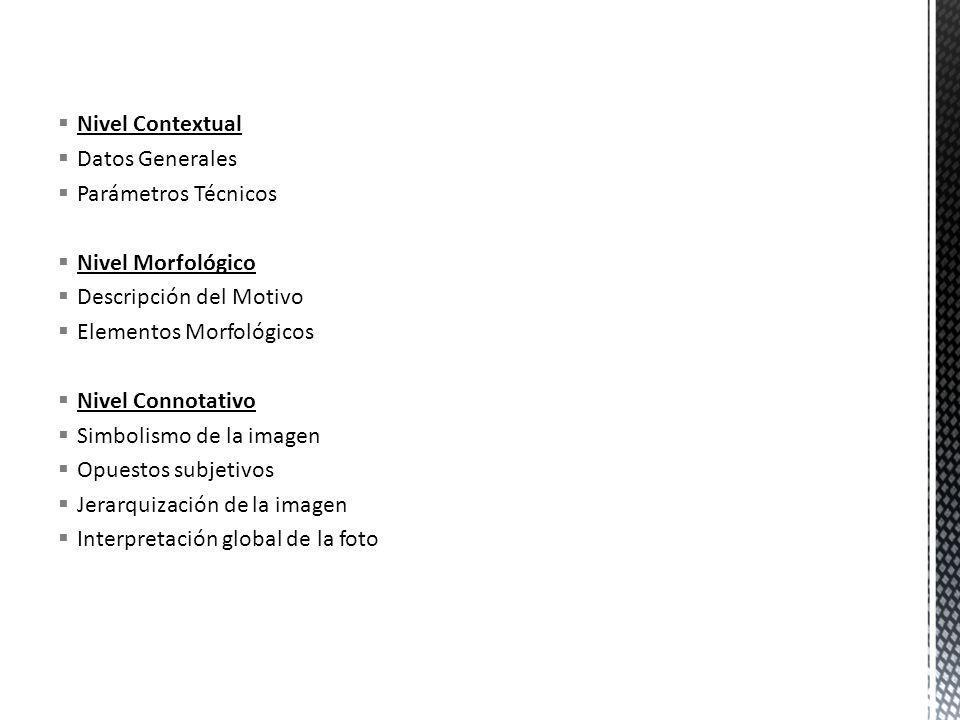 Nivel ContextualDatos Generales. Parámetros Técnicos. Nivel Morfológico. Descripción del Motivo. Elementos Morfológicos.