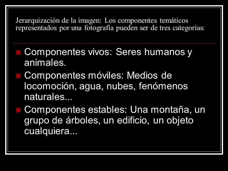 Componentes vivos: Seres humanos y animales.