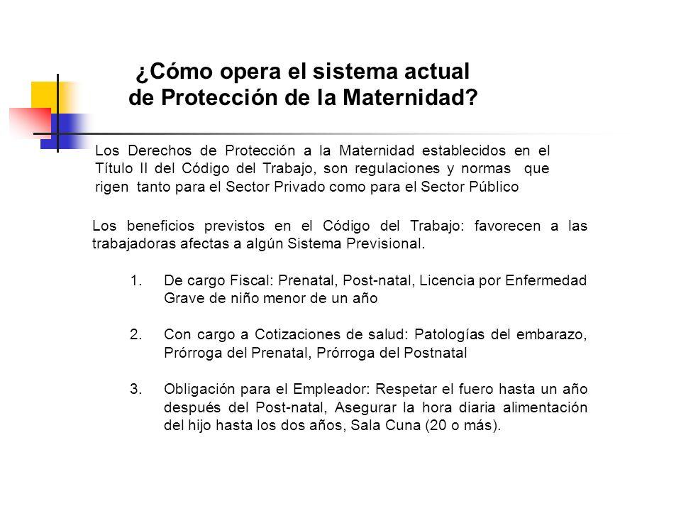 ¿Cómo opera el sistema actual de Protección de la Maternidad