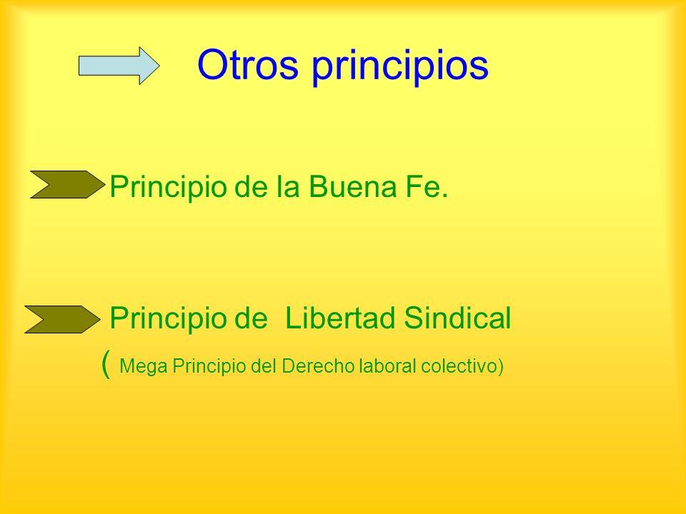 Otros principios Principio de la Buena Fe.