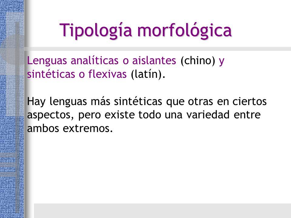 Tipología morfológica