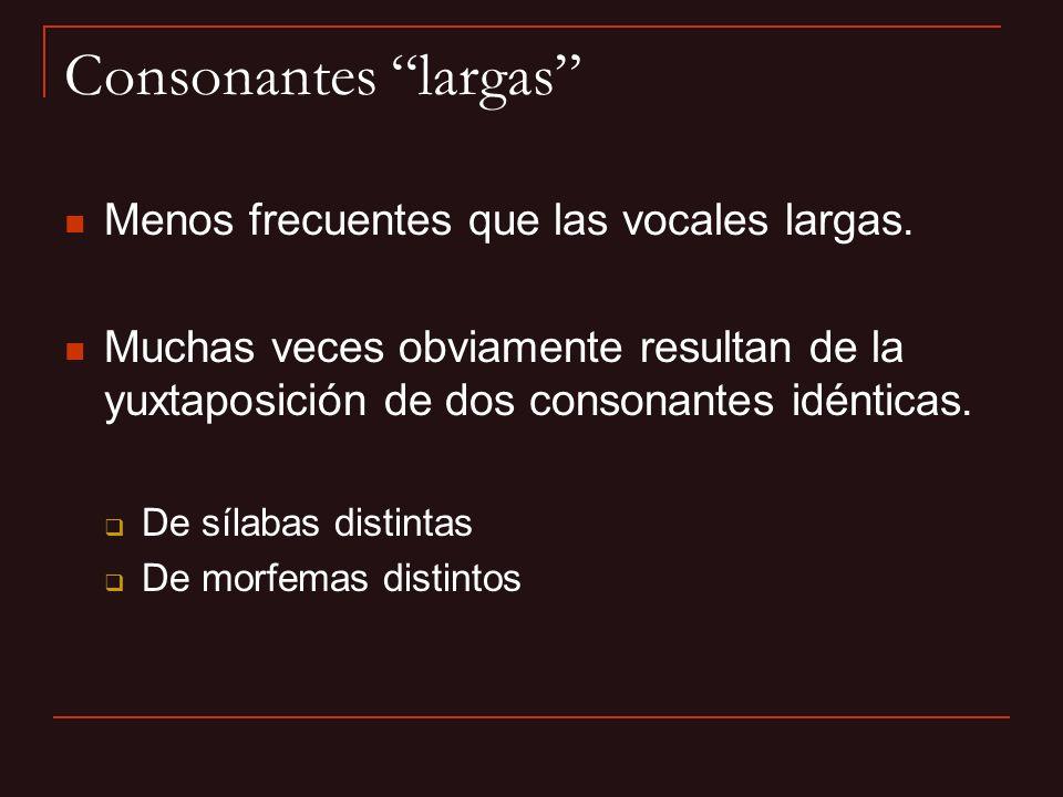 Consonantes largas Menos frecuentes que las vocales largas.