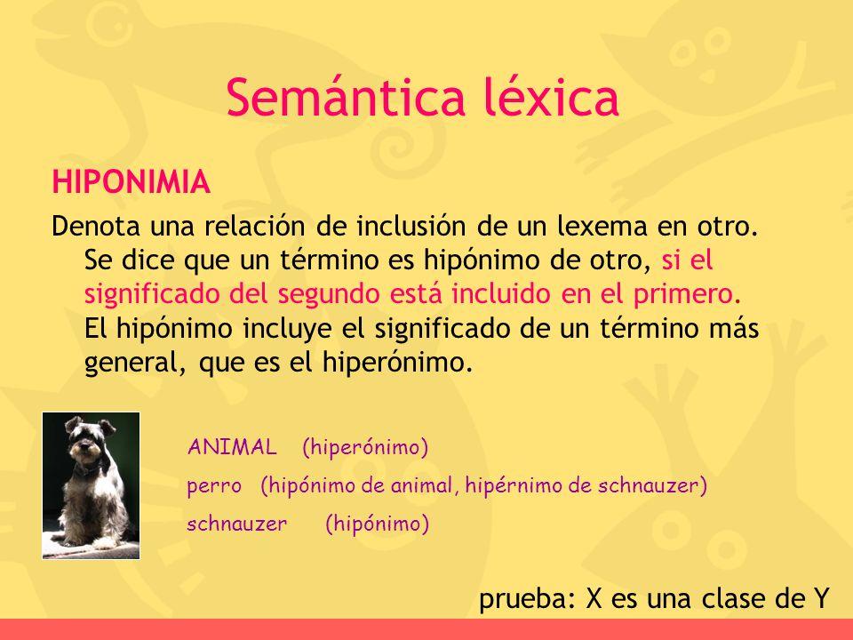 prueba: X es una clase de Y
