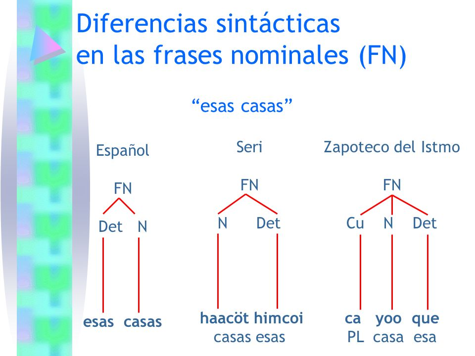 Diferencias sintácticas en las frases nominales (FN)