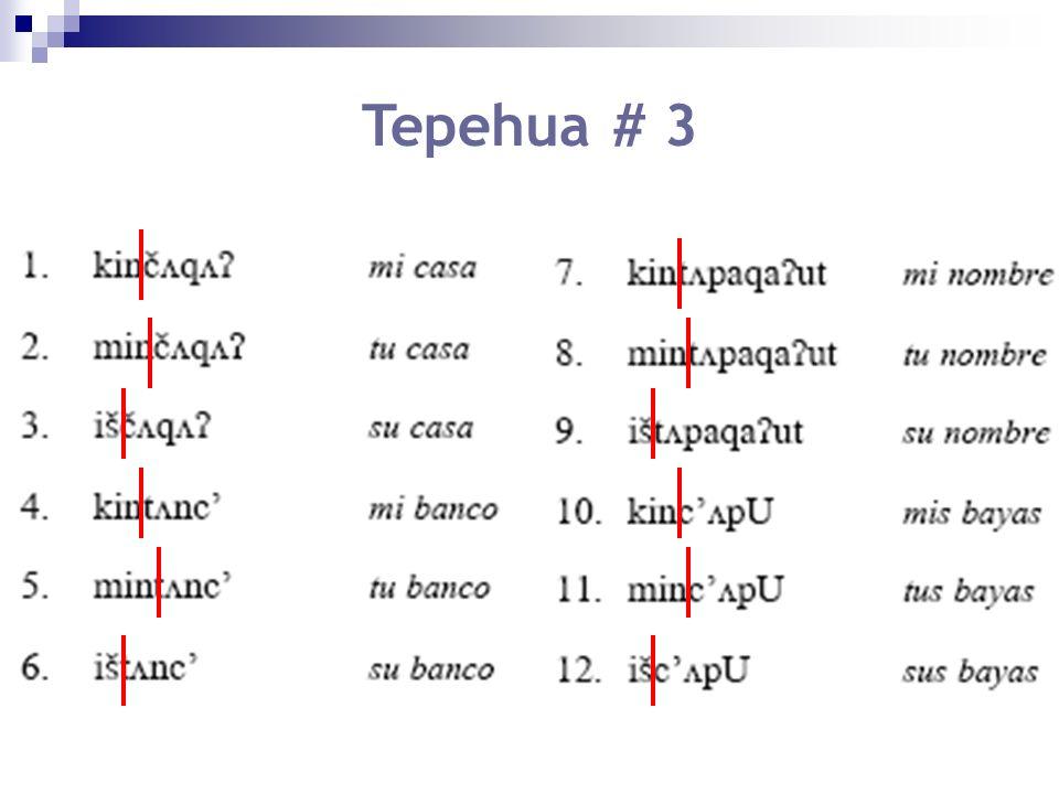 Tepehua # 3