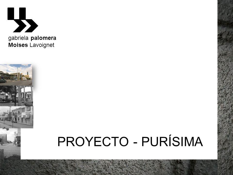 gabriela palomera Moises Lavoignet PROYECTO - PURÍSIMA