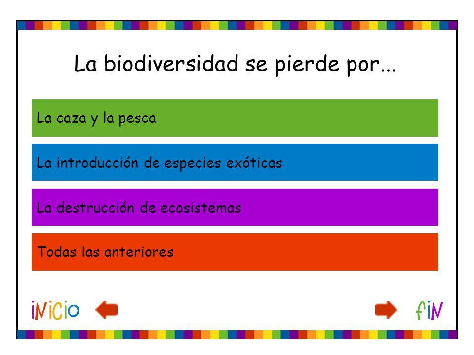 La biodiversidad se pierde por...