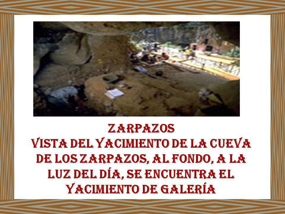 Zarpazos Vista del yacimiento de la Cueva de los Zarpazos, al fondo, a la luz del día, se encuentra el yacimiento de Galería.
