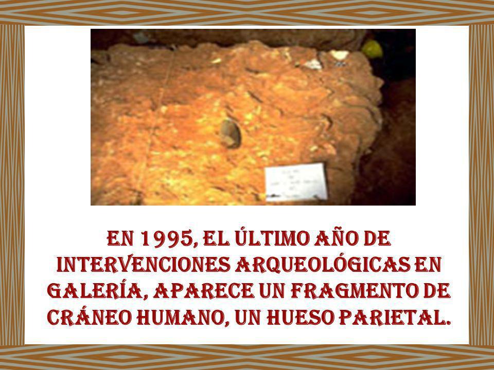 En 1995, el último año de intervenciones arqueológicas en Galería, aparece un fragmento de cráneo humano, un hueso parietal.