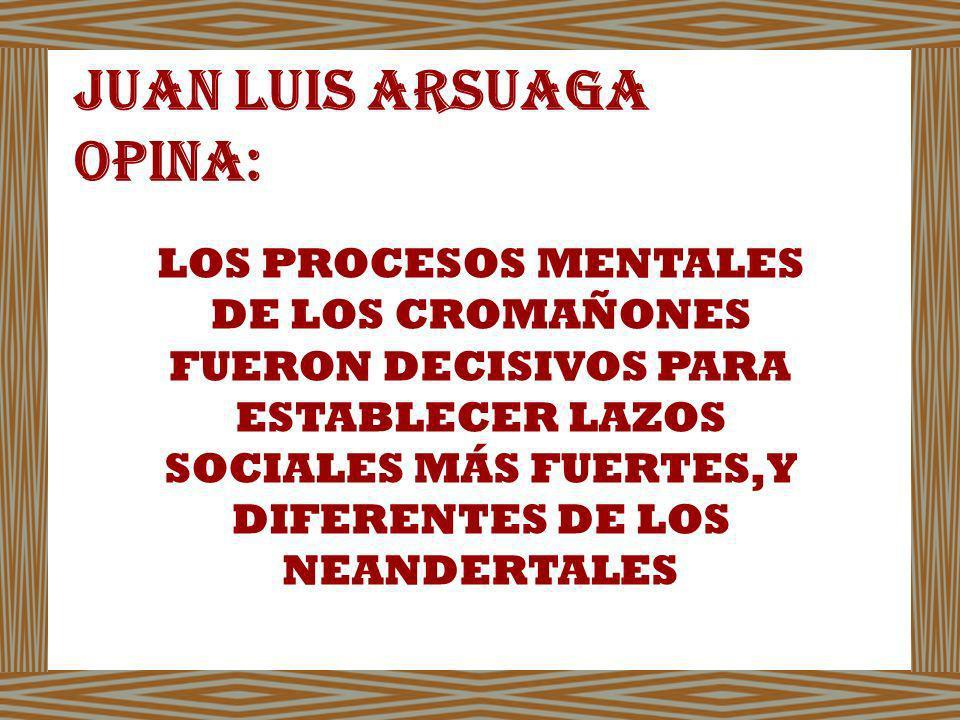 JUAN LUIS ARSUAGA OPINA: