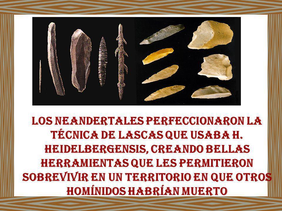 Los neandertales perfeccionaron la técnica de lascas que usaba H