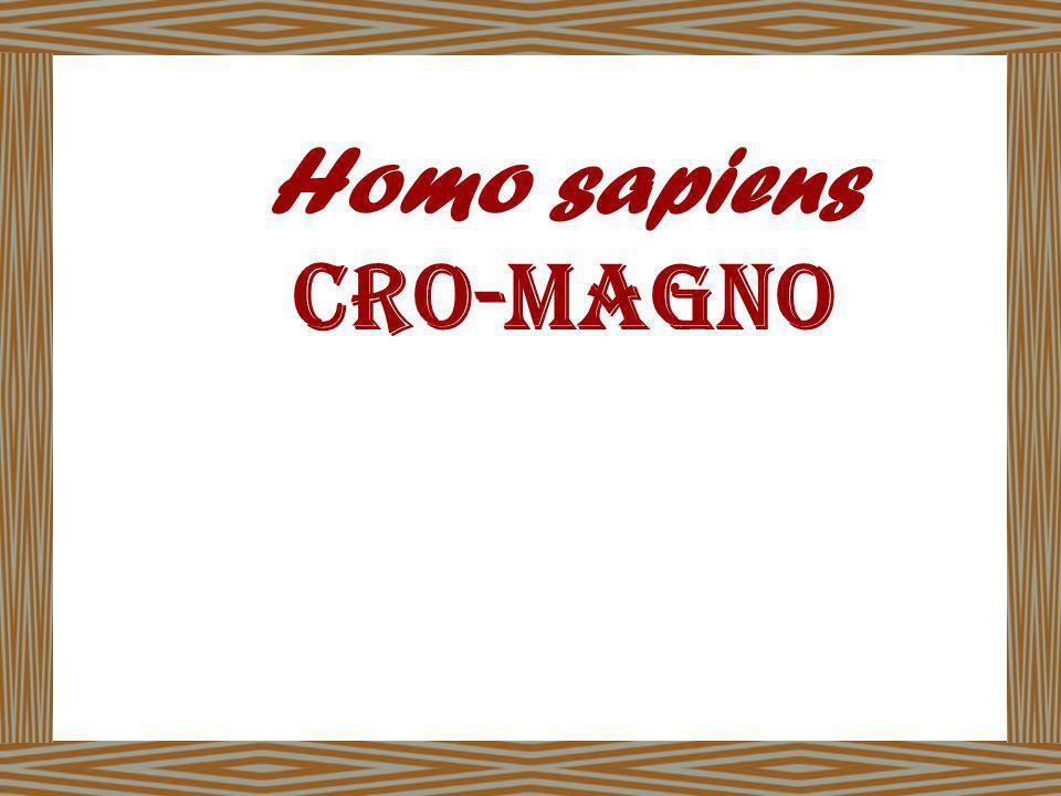 Homo sapiens Cro-magno