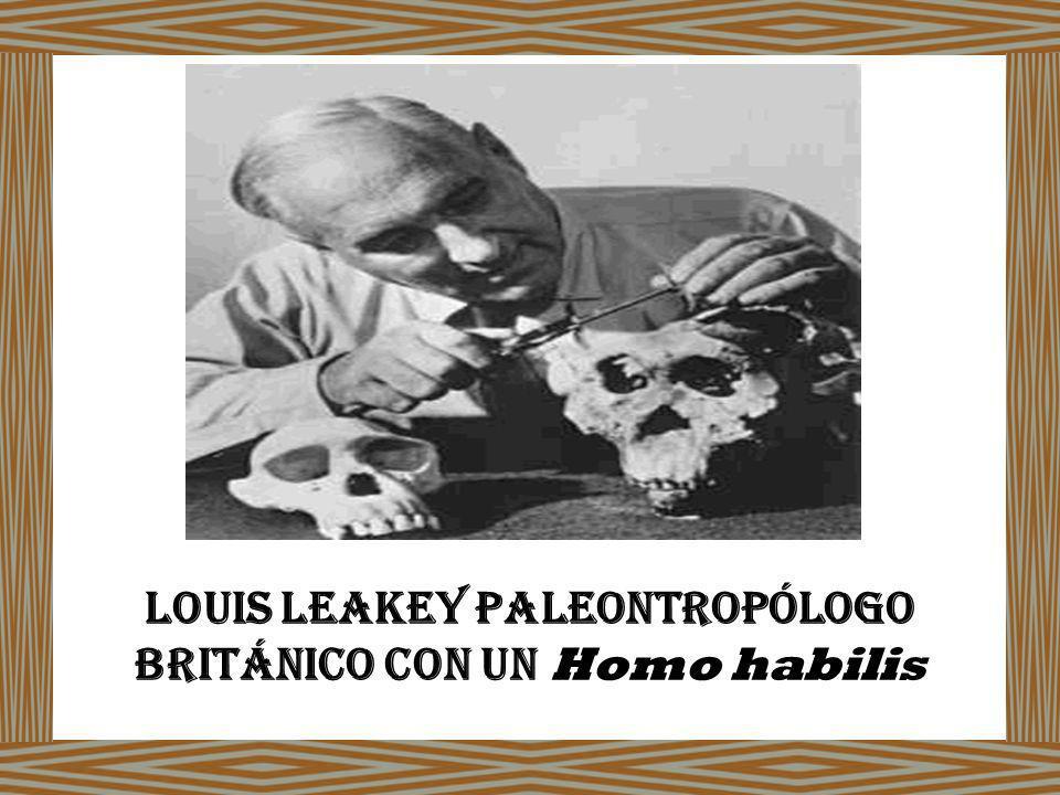 Louis Leakey paleontropólogo británico con un Homo habilis