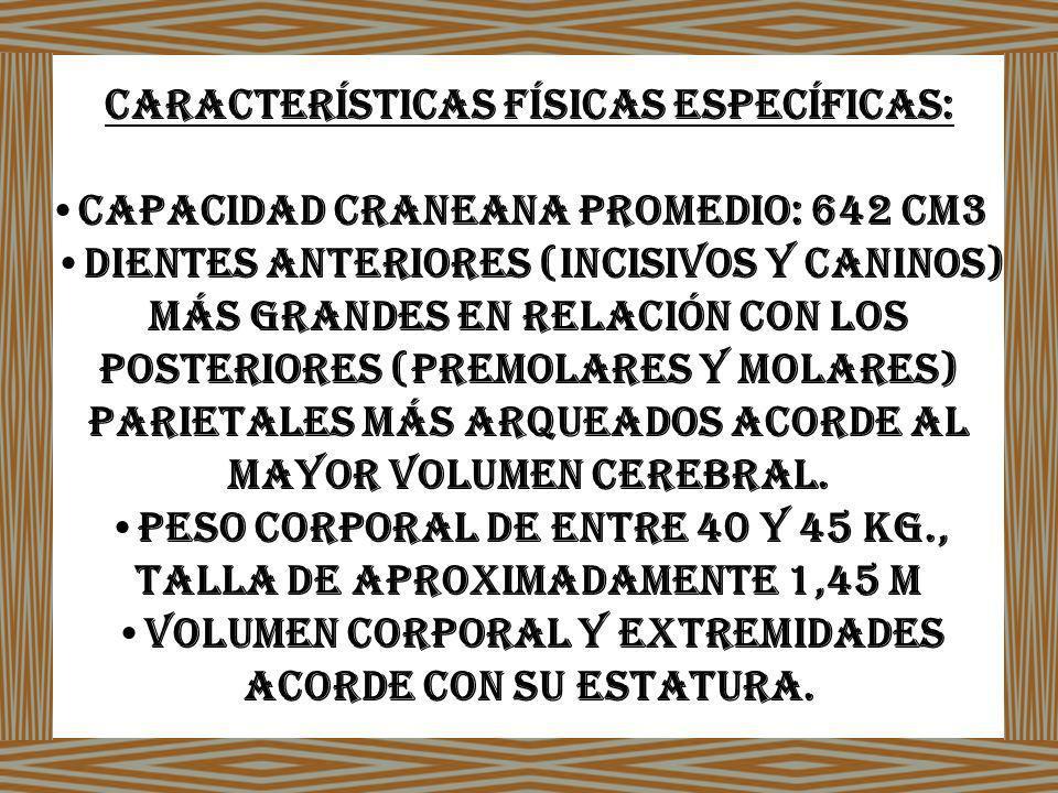 Características físicas específicas: