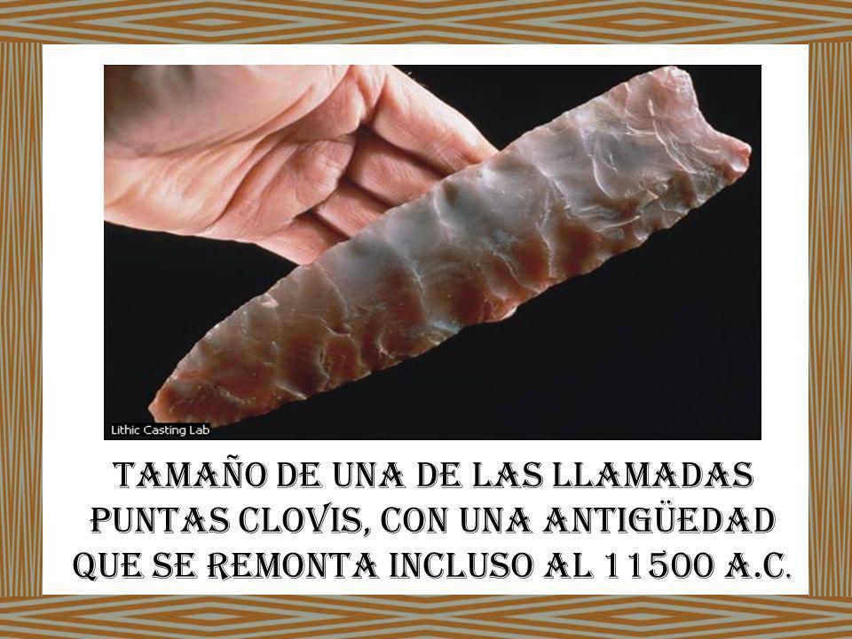 tamaño de una de las llamadas puntas Clovis, con una antigüedad que se remonta incluso al 11500 a.C.