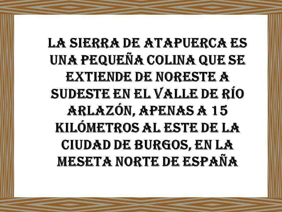 La sierra de atapuerca es una pequeña colina que se extiende de noreste a sudeste en el valle de río Arlazón, apenas a 15 kilómetros al este de la ciudad de Burgos, EN LA MESETA NORTE DE ESPAÑA