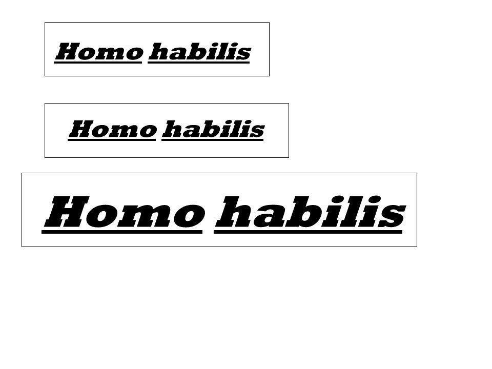 Homo habilis Homo habilis Homo habilis