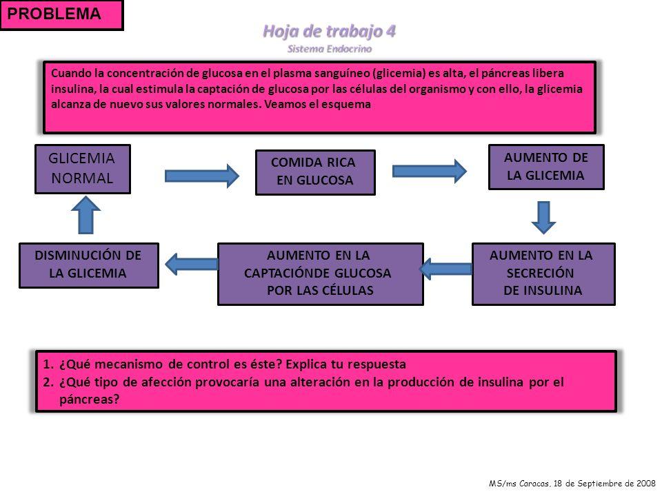 Hoja de trabajo 4 PROBLEMA GLICEMIA NORMAL AUMENTO DE LA GLICEMIA