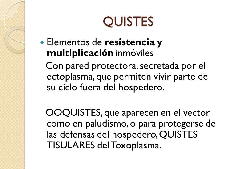 QUISTES Elementos de resistencia y multiplicación inmóviles