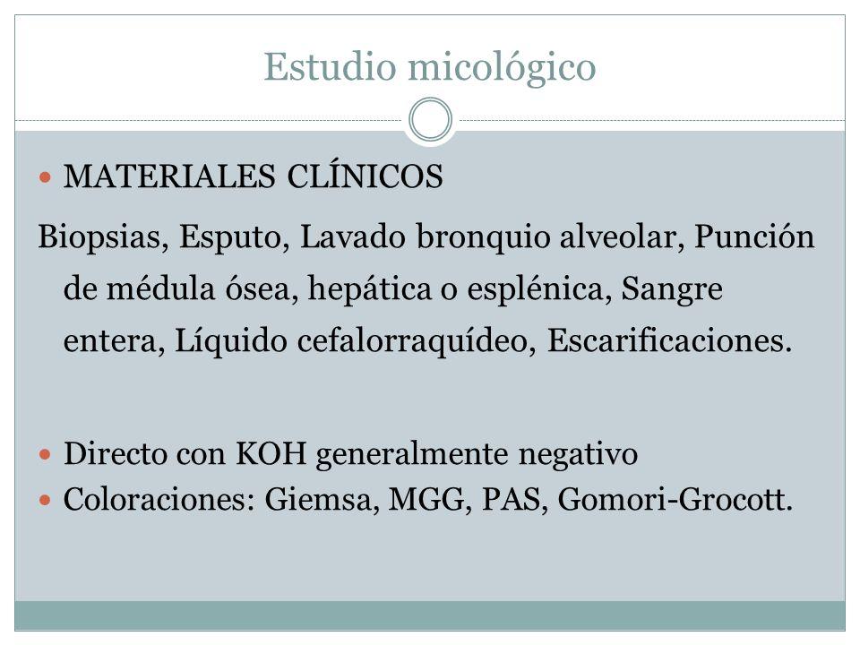 Estudio micológico MATERIALES CLÍNICOS