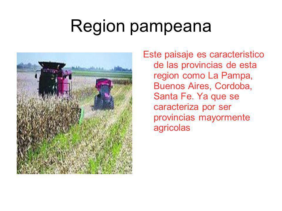 Region pampeana