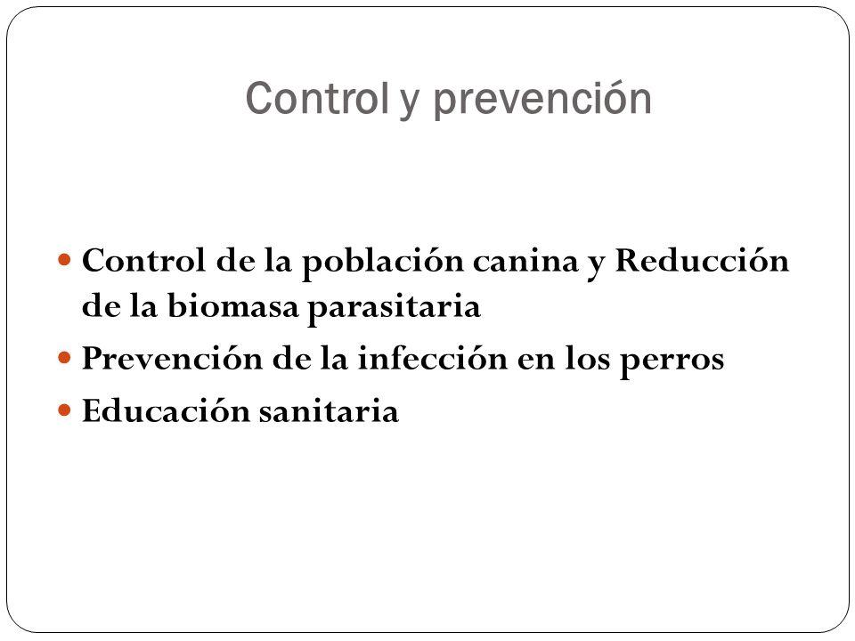Control y prevención Control de la población canina y Reducción de la biomasa parasitaria. Prevención de la infección en los perros.