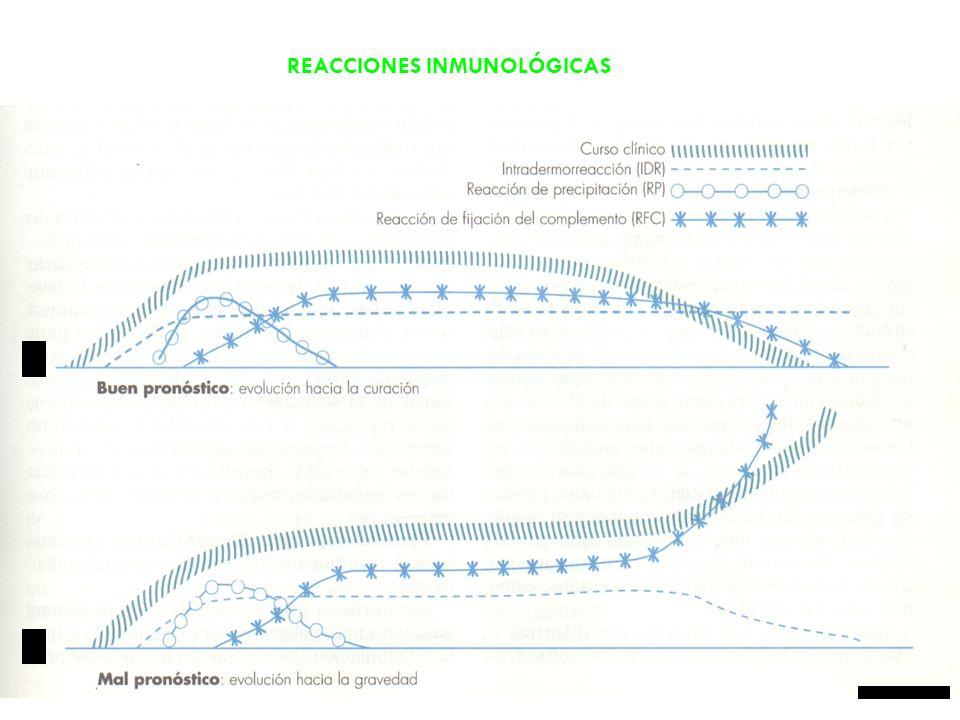 REACCIONES INMUNOLÓGICAS
