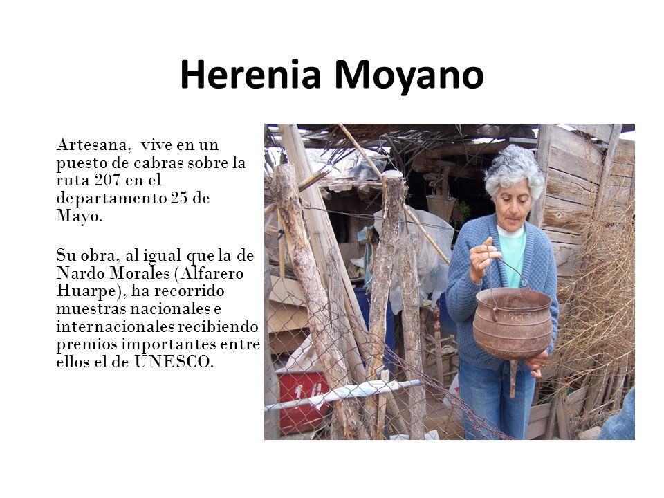 Herenia Moyano Artesana, vive en un puesto de cabras sobre la ruta 207 en el departamento 25 de Mayo.