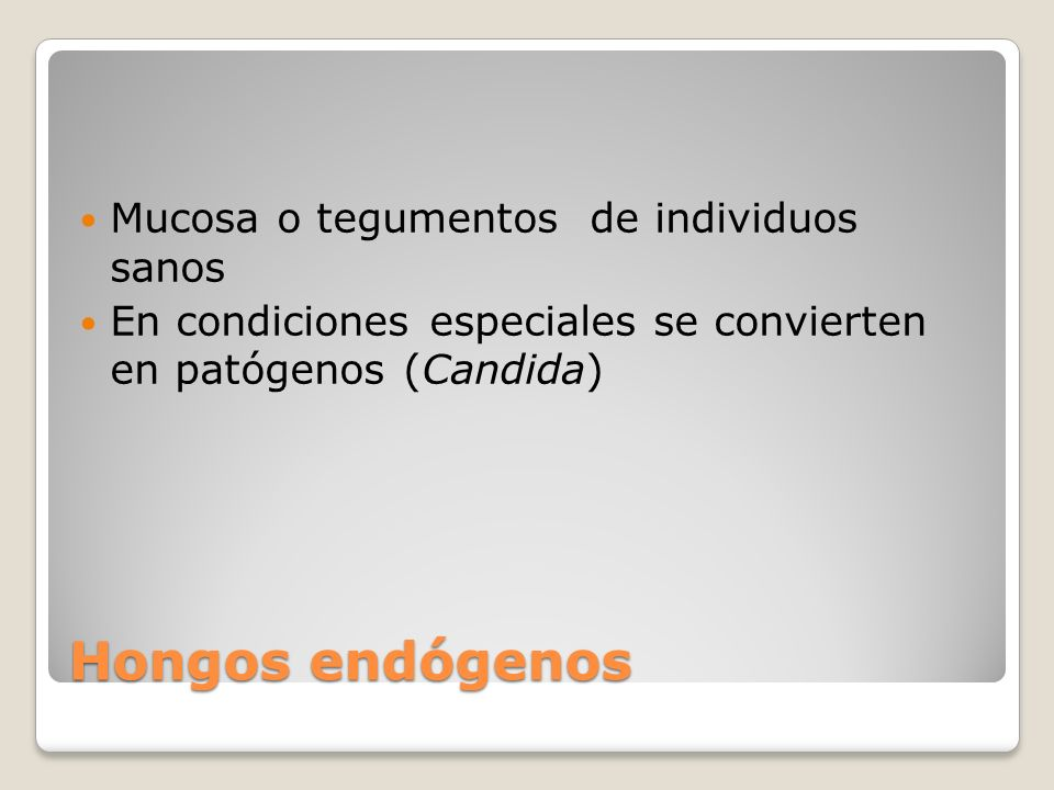 Hongos endógenos Mucosa o tegumentos de individuos sanos