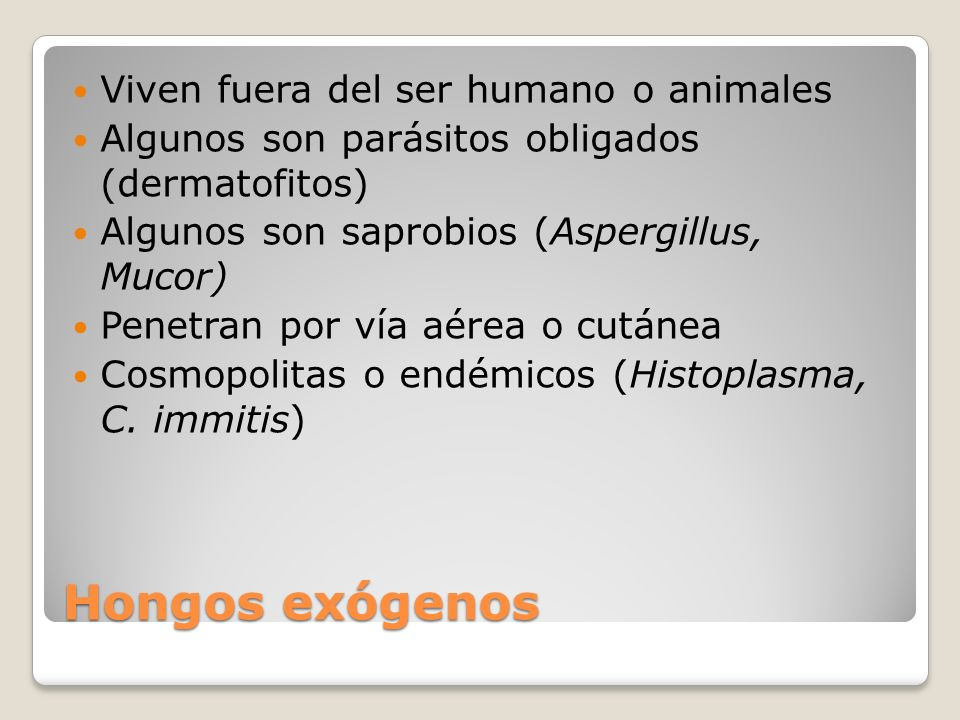 Hongos exógenos Viven fuera del ser humano o animales