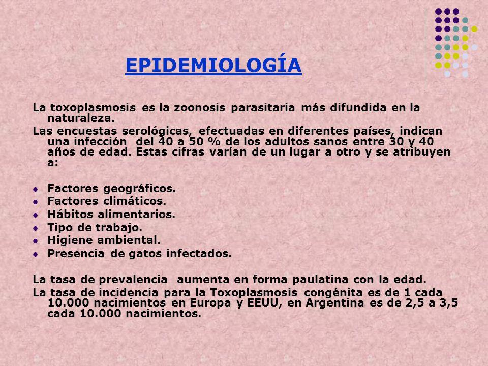 EPIDEMIOLOGÍALa toxoplasmosis es la zoonosis parasitaria más difundida en la naturaleza.