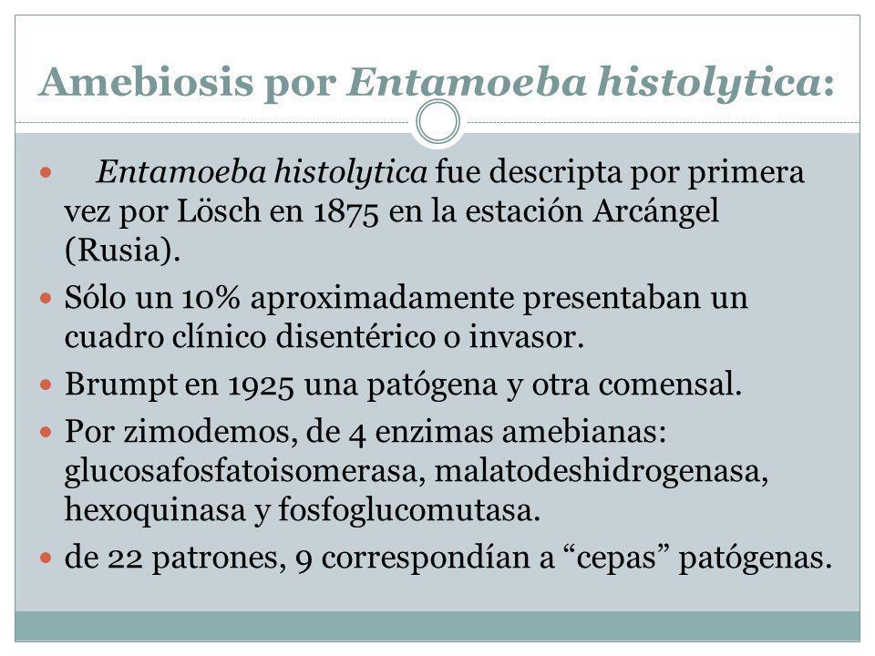 Amebiosis por Entamoeba histolytica: