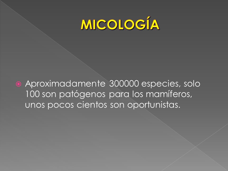 MICOLOGÍA Aproximadamente 300000 especies, solo 100 son patógenos para los mamíferos, unos pocos cientos son oportunistas.