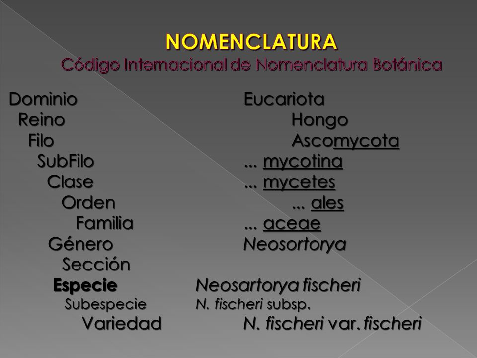 NOMENCLATURA Código Internacional de Nomenclatura Botánica