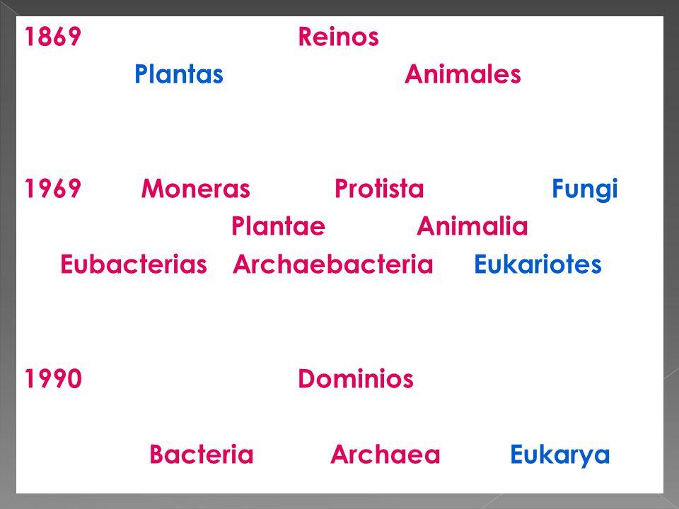 1869 Reinos Plantas Animales 1969 Moneras Protista Fungi Plantae Animalia Eubacterias Archaebacteria Eukariotes 1990 Dominios Bacteria Archaea Eukarya