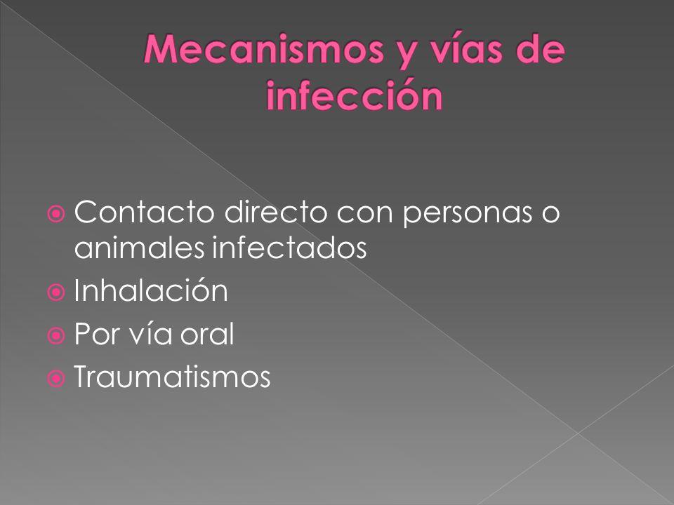 Mecanismos y vías de infección