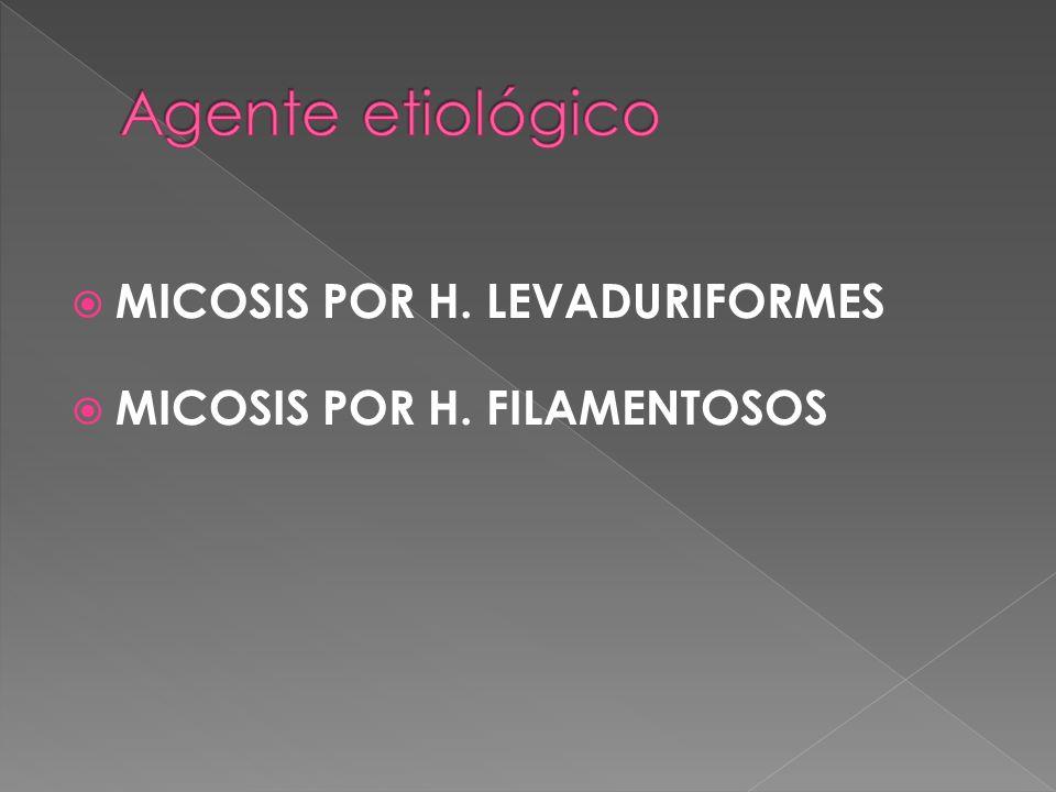 Agente etiológico MICOSIS POR H. LEVADURIFORMES