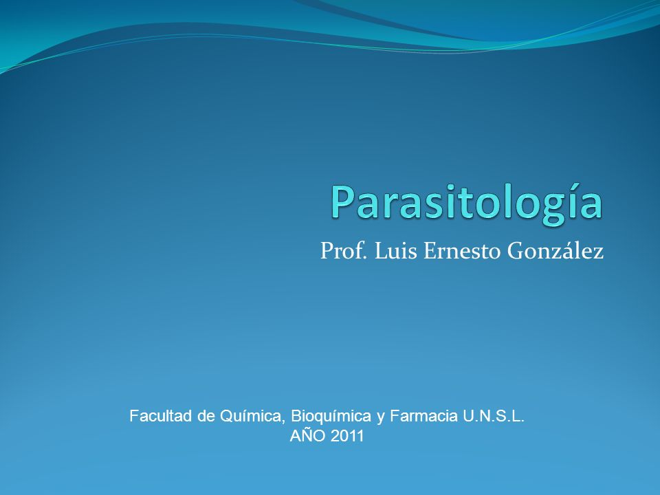 Prof. Luis Ernesto González