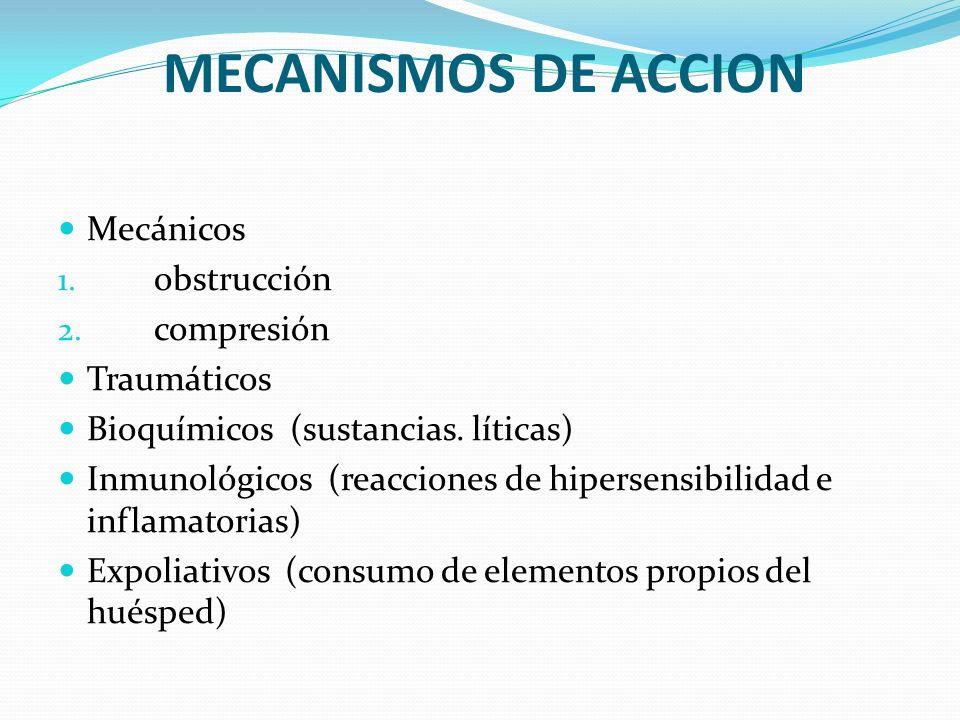 MECANISMOS DE ACCION Mecánicos obstrucción compresión Traumáticos
