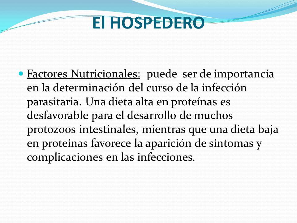 El HOSPEDERO