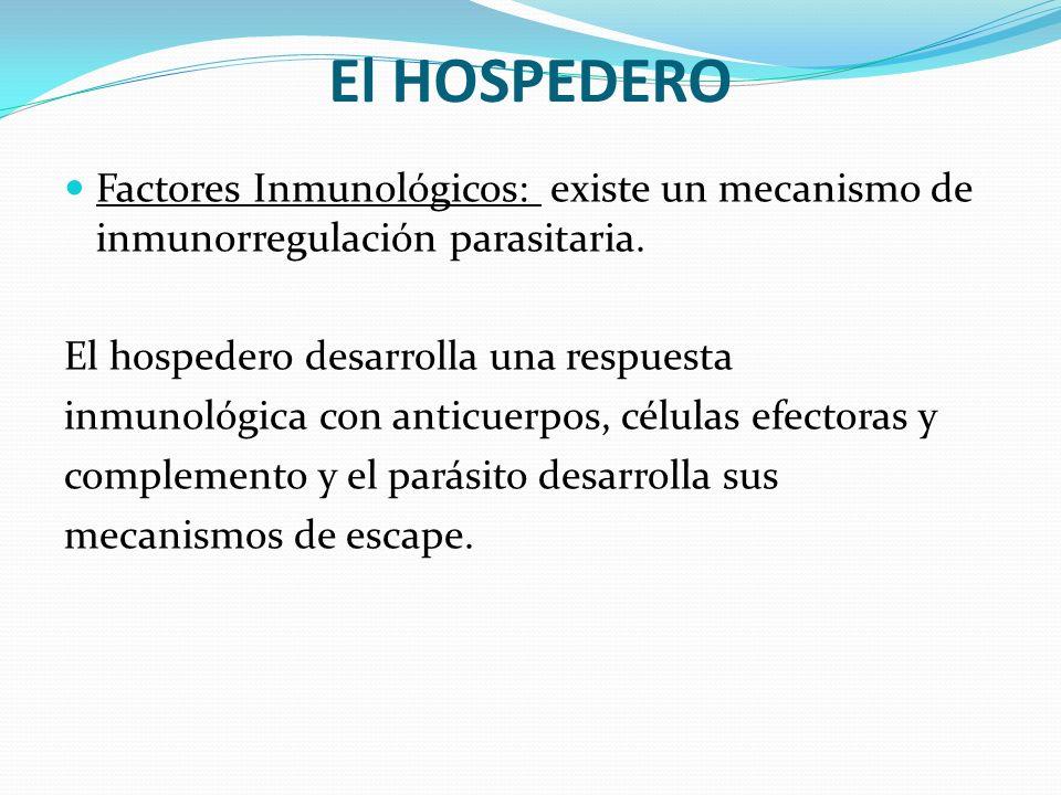 El HOSPEDERO Factores Inmunológicos: existe un mecanismo de inmunorregulación parasitaria. El hospedero desarrolla una respuesta.