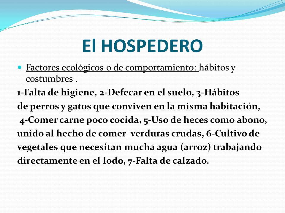 El HOSPEDERO Factores ecológicos o de comportamiento: hábitos y costumbres . 1-Falta de higiene, 2-Defecar en el suelo, 3-Hábitos.