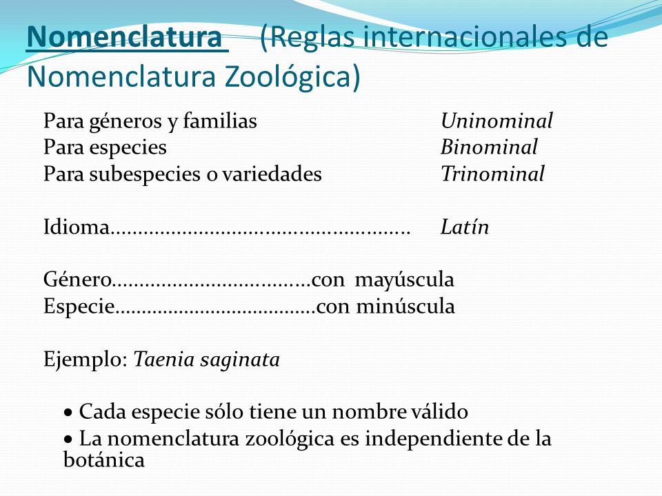 Nomenclatura (Reglas internacionales de Nomenclatura Zoológica)