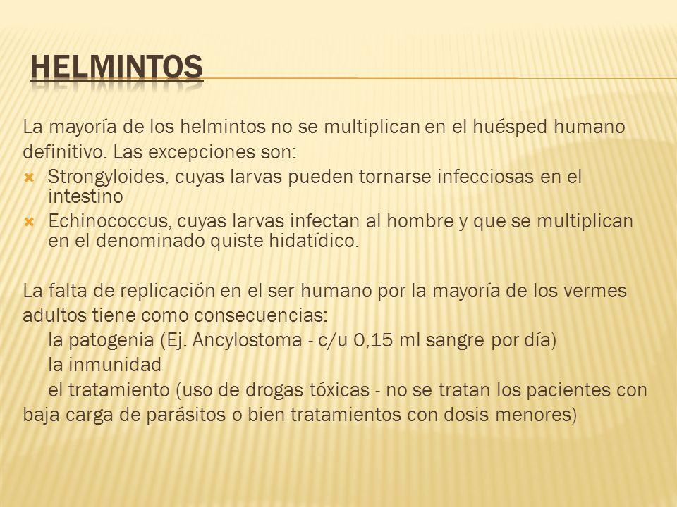 HELMINTOS La mayoría de los helmintos no se multiplican en el huésped humano. definitivo. Las excepciones son: