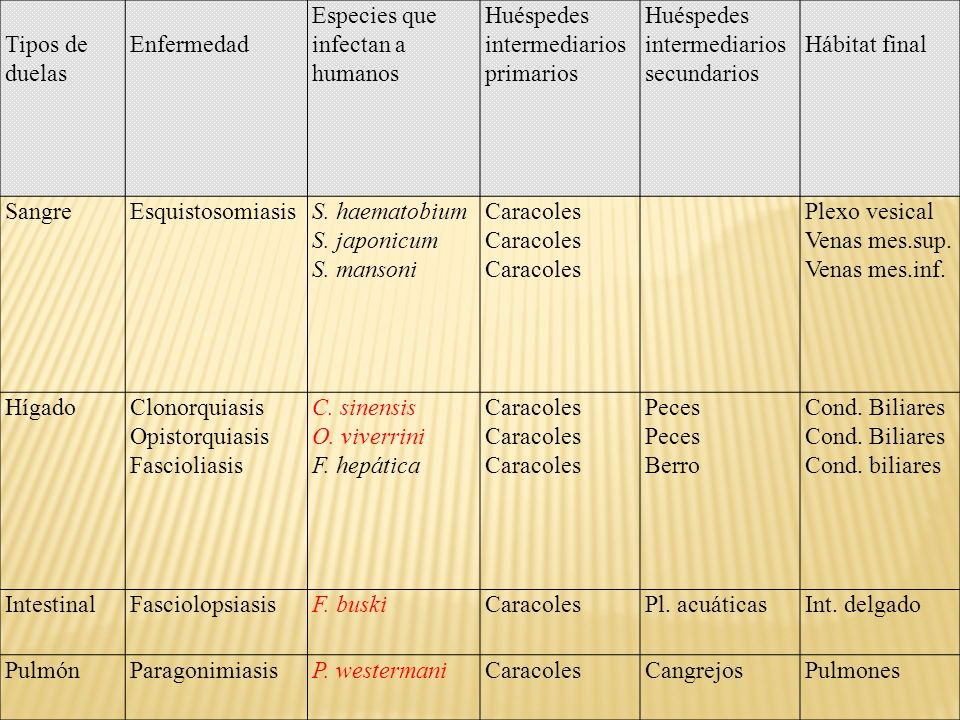 Tipos de duelas Enfermedad. Especies que infectan a humanos. Huéspedes intermediarios primarios. Huéspedes intermediarios secundarios.